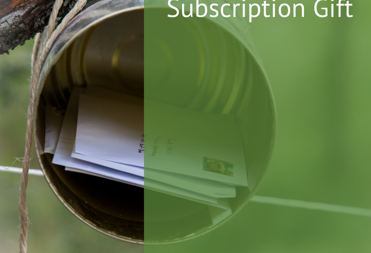 Tips to Creating a Simple Newsletter Subscription Gift